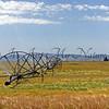 Wheat & Irrigation Wheels