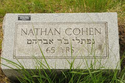 Waldheim Cemetery Photos-2011
