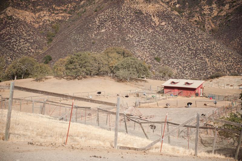 20131111-farmhouse-14.jpg