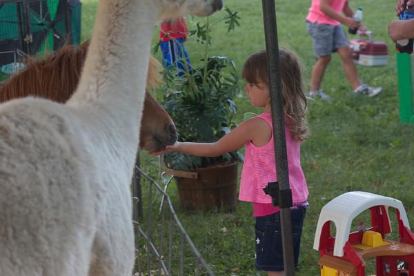 Wapello County Fair