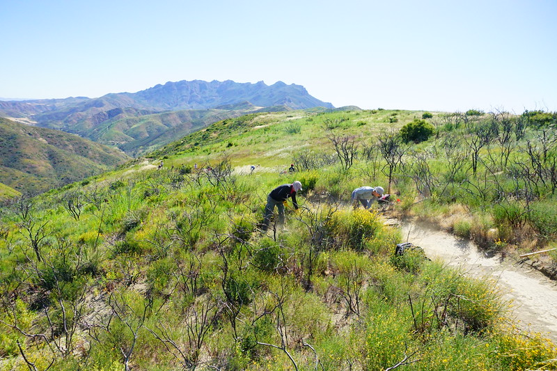 20170429007-SMM Trail Days, Trailwork.JPG