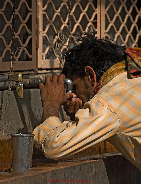 India2010-0211A-528A.jpg