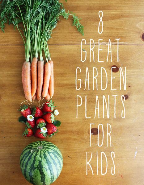 8 Great Garden Plants for Kids