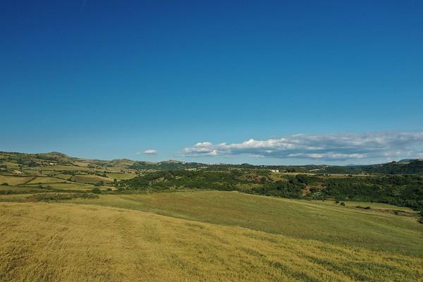 Drone - Saccargia - Pecore - Fine primavera - foraggio - ovini - 28.05.2020