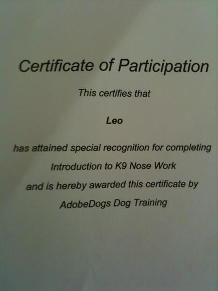 2011-09-04-Certificate-Leo.jpg