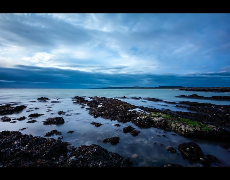 Port Waikato - The Kelp Gardens