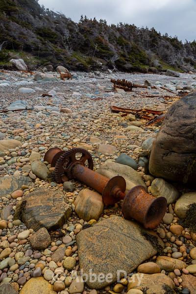 Washed ashore