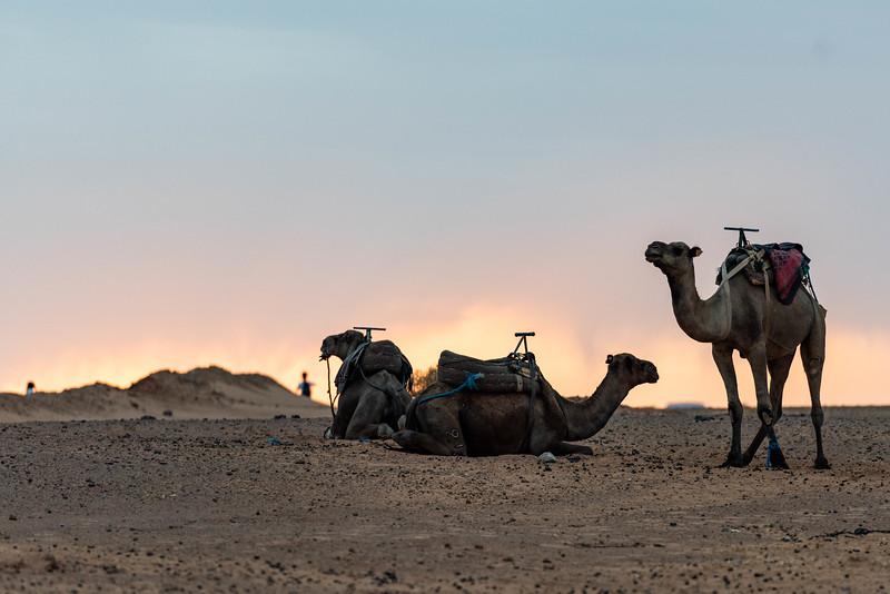 Marruecos-_MM11544.jpg