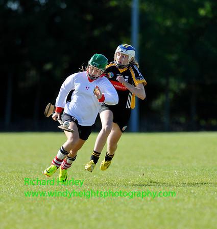 Semi-Final Cork v Kilkenny