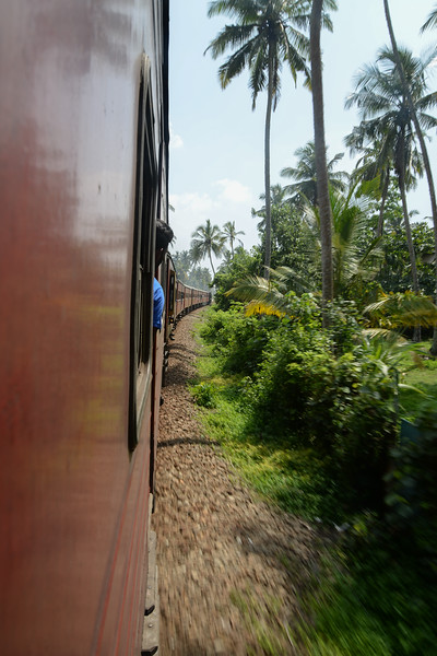 Le train est un moyen de transport fabuleux dans ce pays si on n'est pas top pressé !