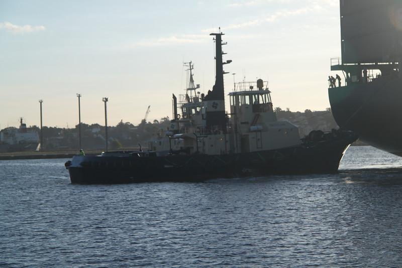 Katsuragi in Port Jackson 152.jpg