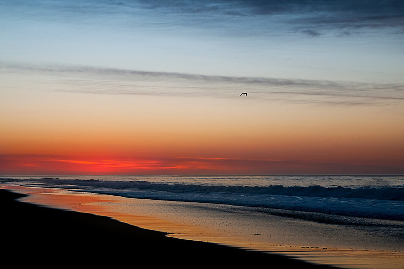 sd_mtk_s_edison_beach001.jpg