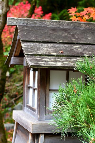 Portland Japanese Garden  11-11-11  3500.jpg