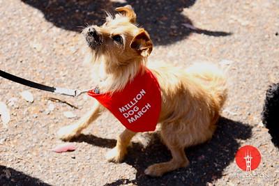 Million Dog March