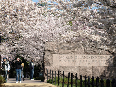 Washington's Monuments