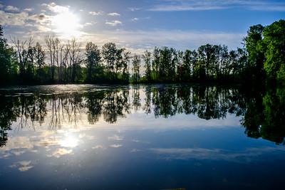 Whitaker Pond