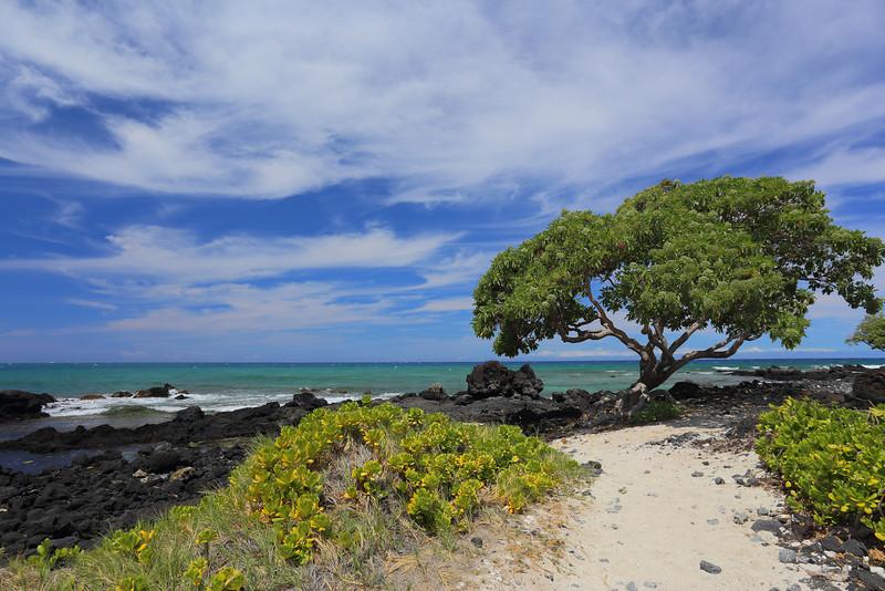 Big Island 27.JPG