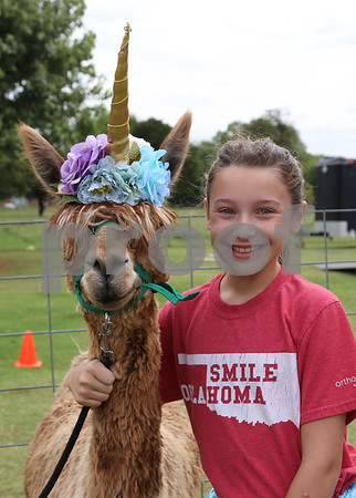 Alpaca Farm Days 2019