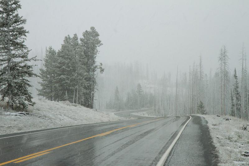 02_Yellowstone National Park_Montana_Wyoming-103.jpg