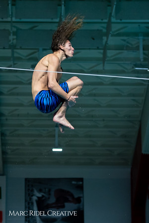 Broughton diving. January 14, 2019. 750_3150