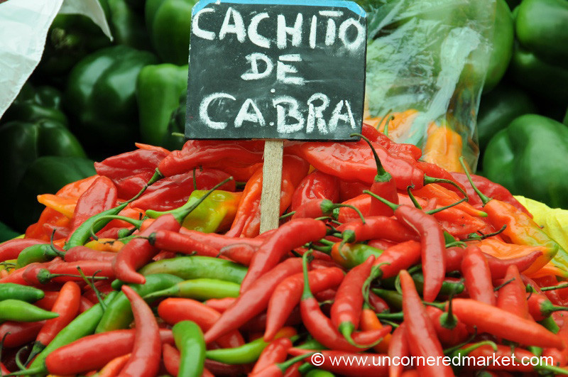 Cachito de Cabra - Mistura Gastronomy Festival in Lima, Peru