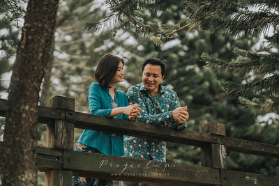 Pre Wedding Gallery