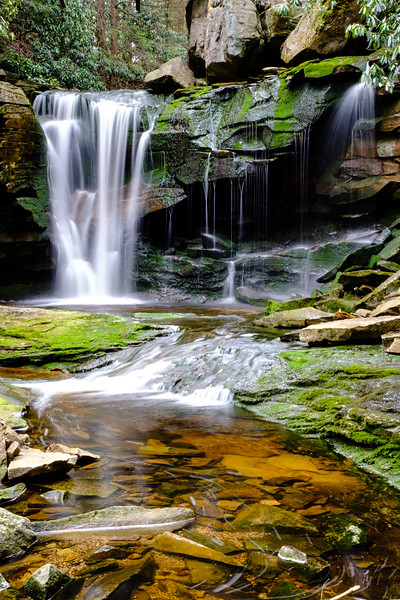 20180504-05 Blackwater Falls State Park 006.jpg