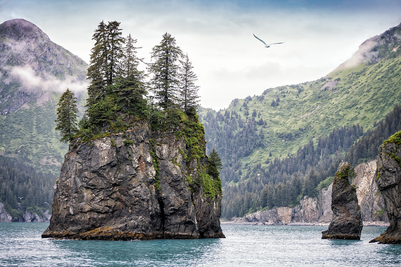 Kenai Fjords National Park - Things to do in Alaska