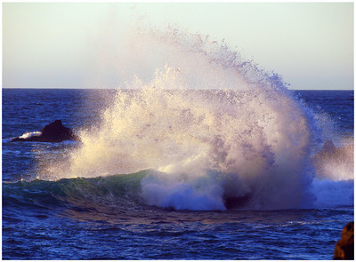 Bodega Bay & Sonoma Coast