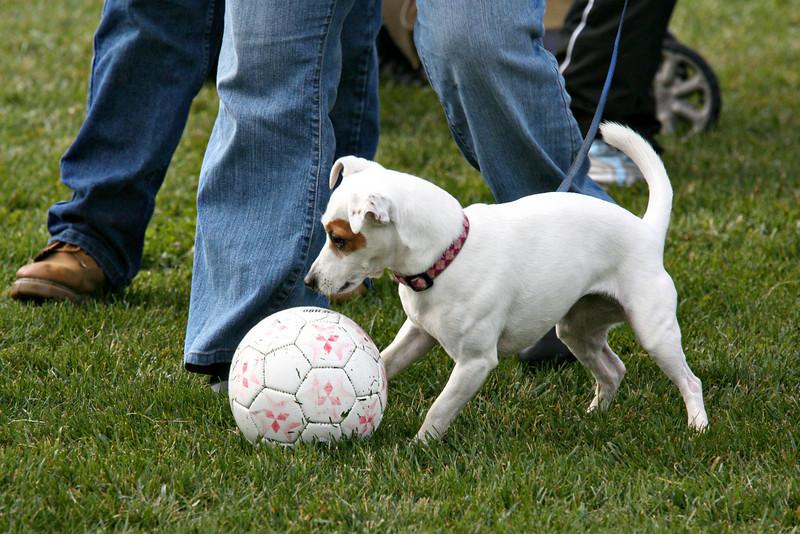 2009 Soccer Jamborie - 016.jpg
