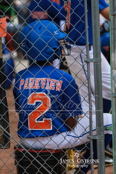 Parkview Youth Boys Baseball