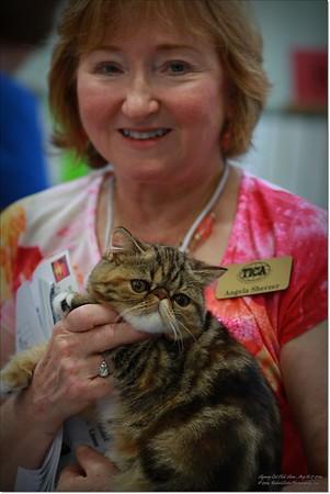 2014-08-17......Skyway Cat Club of Tampa Bay,Fl