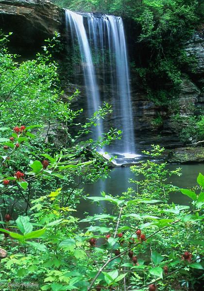 Crawford (aka Deerleap) Falls, Dawson County, Ga.