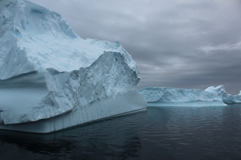 Antarctica 160.JPG