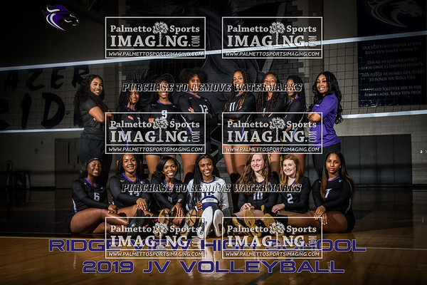 2019 Ridge View Volleyball Team and Individuals