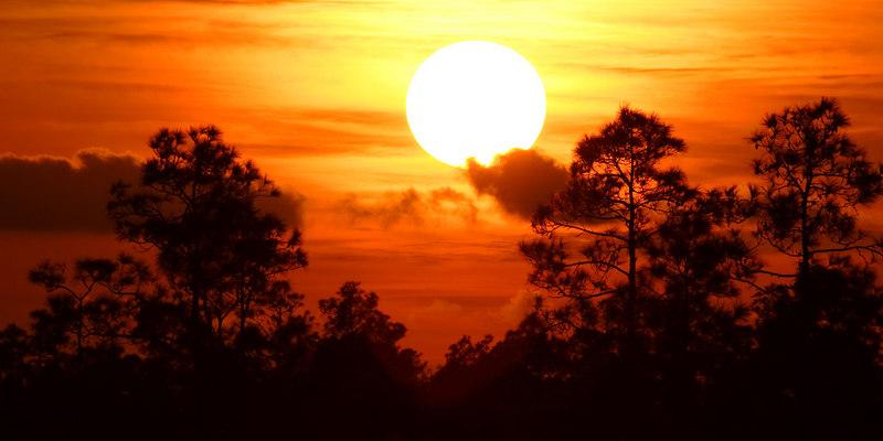 Fiery Sunset Everglades National Park Florida