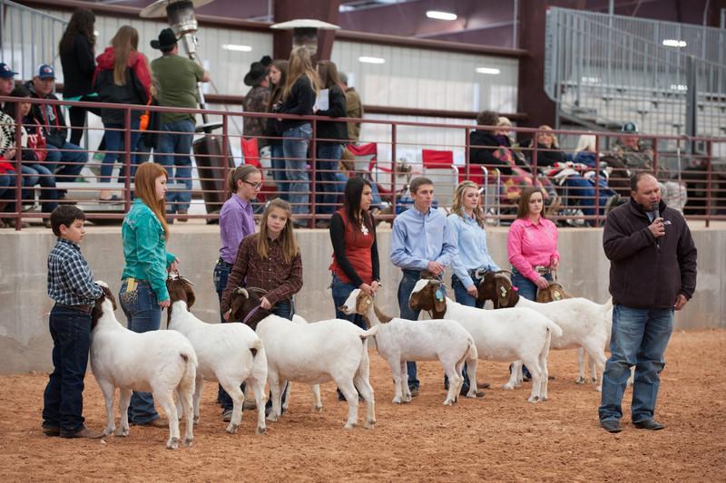 Hays_County_Show-6676.jpg