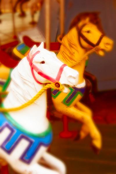 080412_Horses