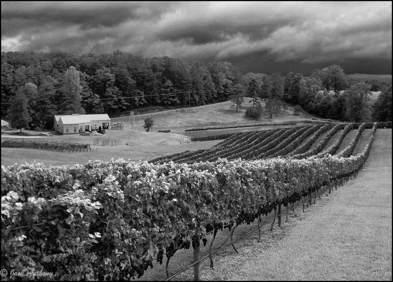 Three Ssters winery, Dahlonega, GA