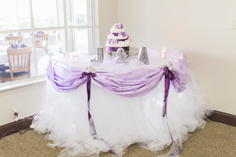 ELP1104 Amber & Jay Orlando wedding 2118.jpg