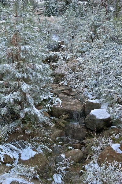 Stream near Wuksatchi Lodge, Sequoia National Park, California