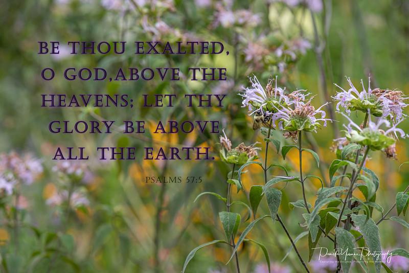 Psalms 57 5.jpg