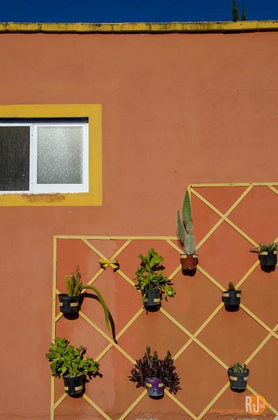 Mexico-San Luis Potosi-8311.jpg