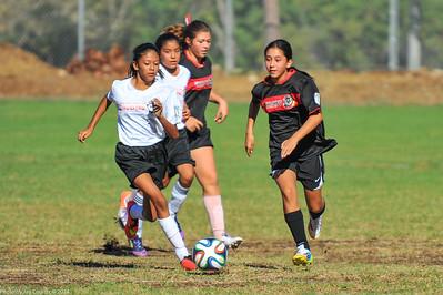 CSC Girls Div 3 Recreational 10-4-2014