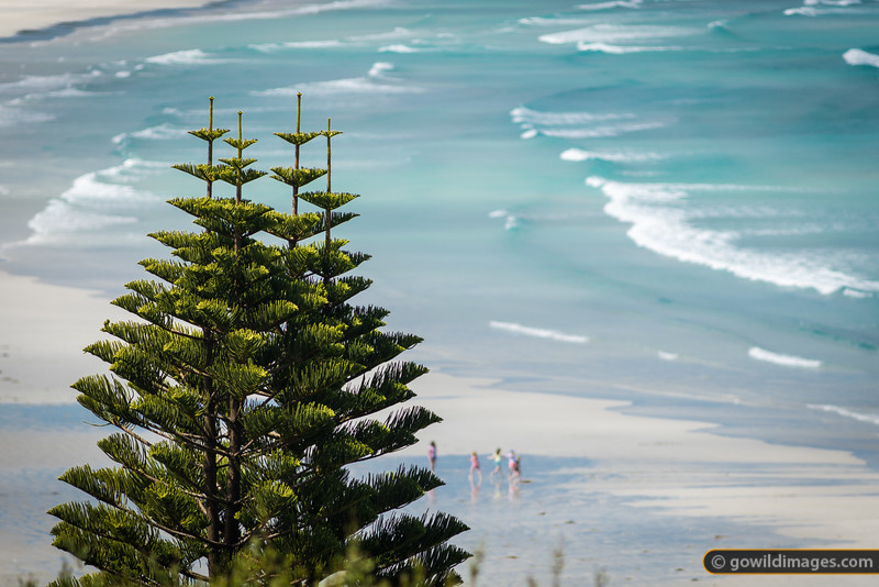 Kids at play on the white sands of Cape Bridgewater beach