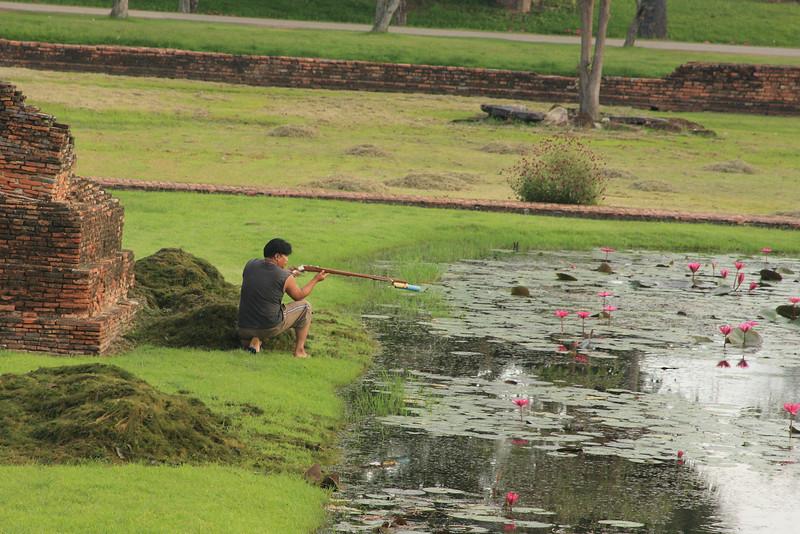 Spear gun fishing