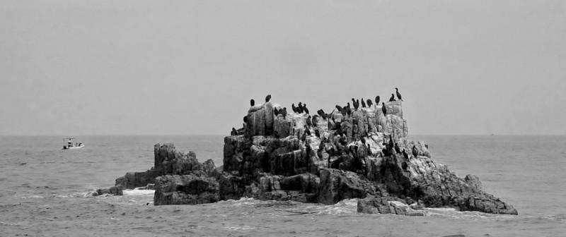 Bretagne-054sv.jpg