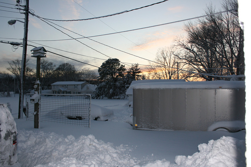 snow 2010 feb IMG_2387 (24).JPG