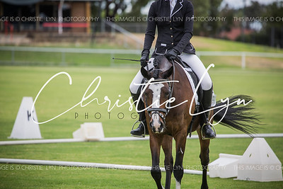 Hearts & Horses dressage day: 11th February 2017