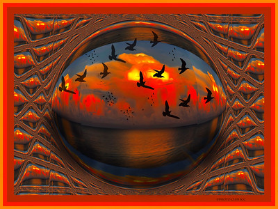 DIGITAL CREATIVE -  Ocean BowlKathy VitaleAd14gold